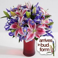 Deluxe Joyful Bouquet