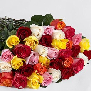 画像2: Three Dozen Rainbow Roses