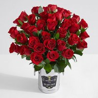 Three Dozen Long Stemmed Red Roses