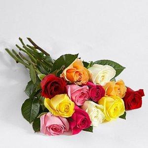 画像2: 12 Rainbow Roses with Dipped Cheesecake Trio
