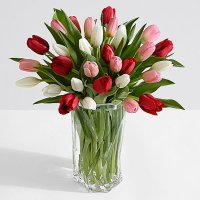30 Sweetheart Tulips