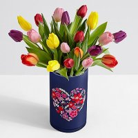 20 Multi-Colored Tulips